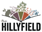The Hillyfield woodland project